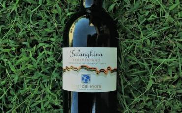 Falanghina Sassi del Mare 2016 DoTrzechDych